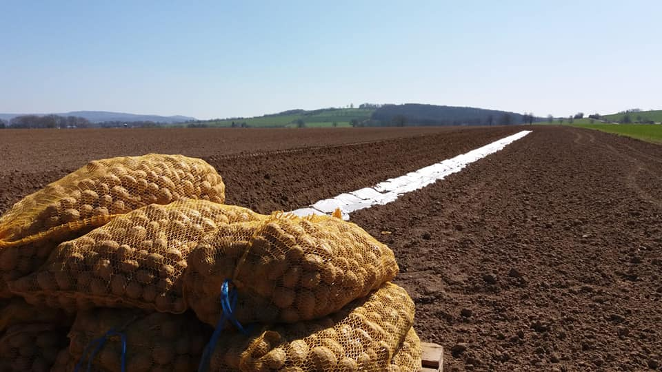 Kartoffeln Geflügelhof Bömeke
